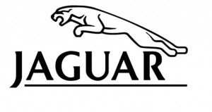 Stevinson Imports, Rocky Mountain Jaguar Club